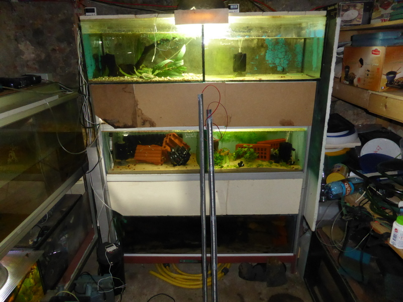 Meeki 67 Utilisation D Un Ruban Led En Aquarium